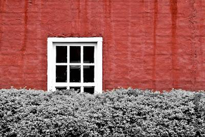 Nada contra o outono - por Jean Tosetto