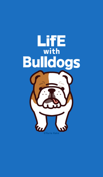 Life with bulldogs