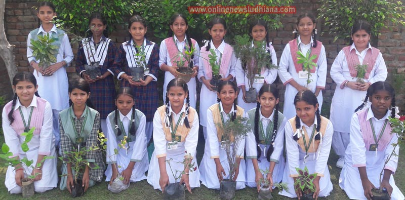 Students ready to plant the saplings during Van Mahotsav celebration by Green Land Convent School