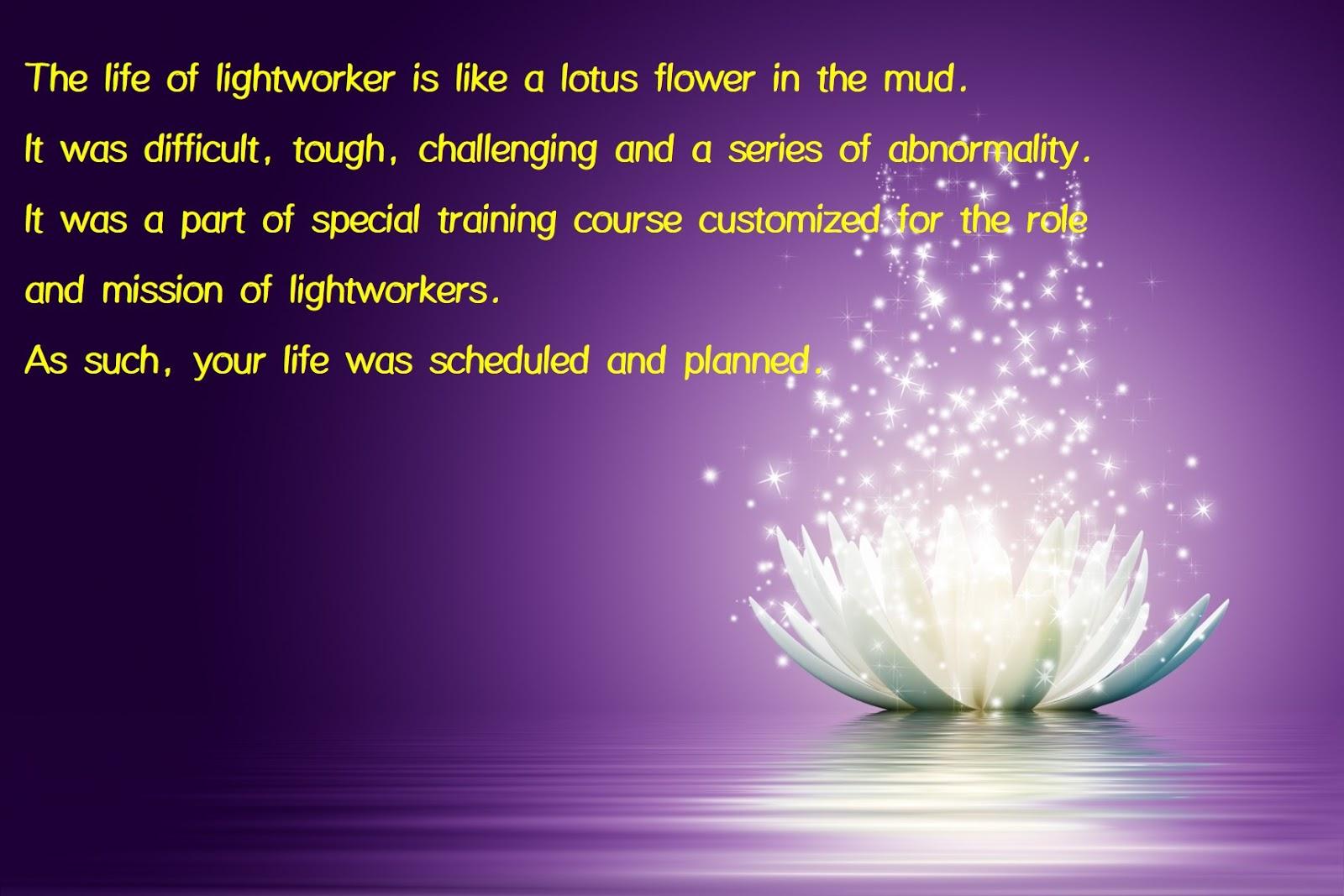 The tragic destiny of lightworkers 9 : Fierce life program