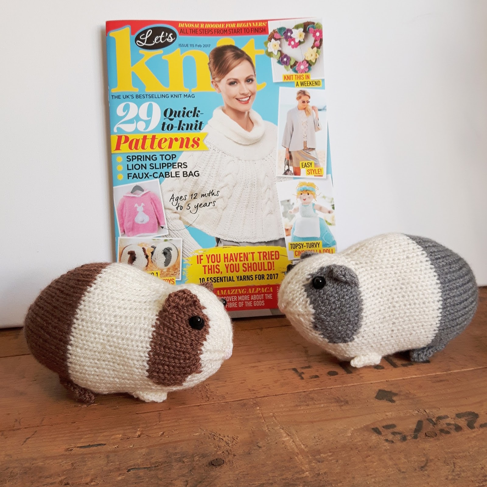Knit For Victory Let S Knit Guinea Pigs