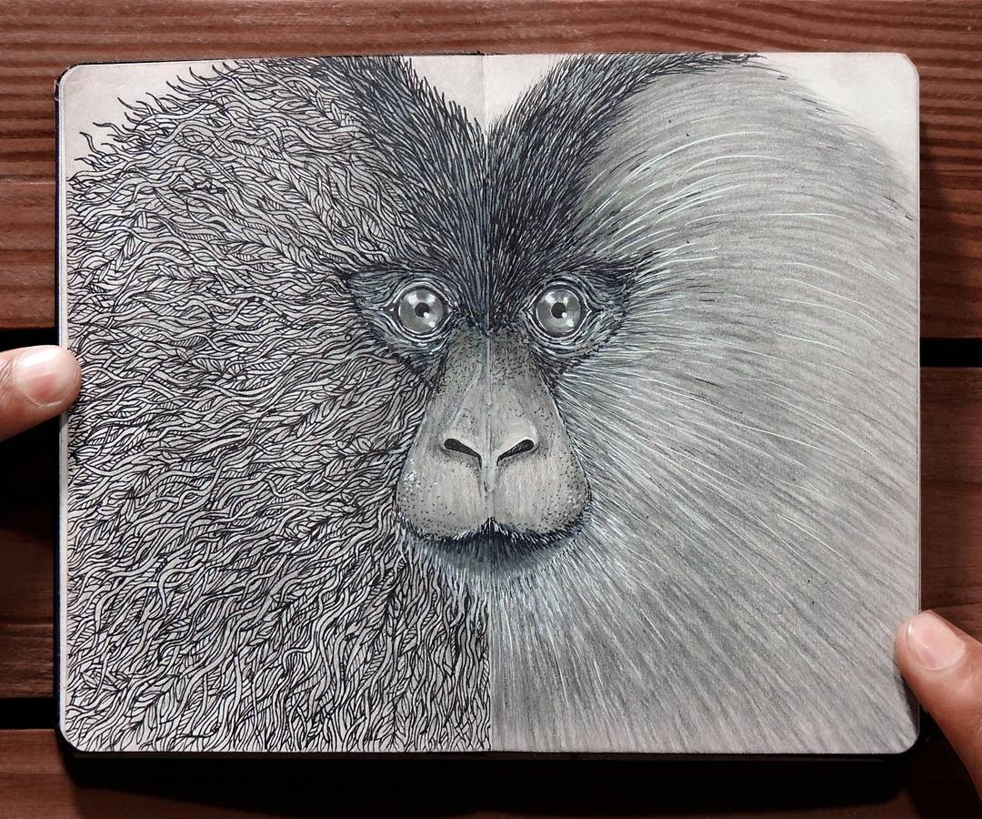 04-Lion-Tailed-Macaque-Rohan-Sharad-Dahotre-Eclectic-Illustration-Styles-and-Exotic-Animals-www-designstack-co