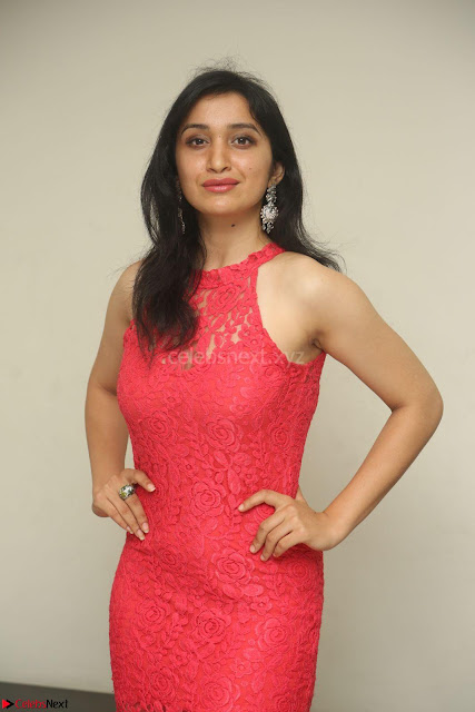Sakshi Kakkar in Red Legsplit Sleeveless Gown at Dare movie Press meet ~  Exclusive 007.JPG