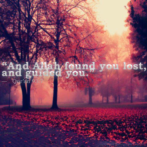 And Allah found you lost, and guided you