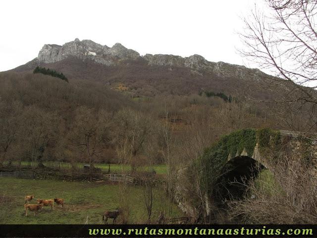 Puente Romano Campo Caso