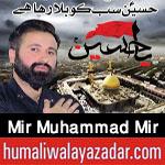 http://www.humaliwalayazadar.com/2017/10/mir-muhammad-mir-nohay-2018.html