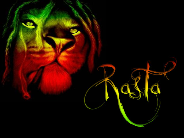 Cat Cute Wallpaper Download Funny Image Collection Rasta Lion Layouts Amp Backgrounds