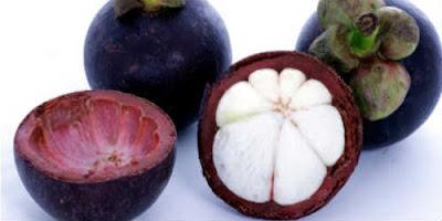 Khasiat buah manggis bagi kesehatan tubuh