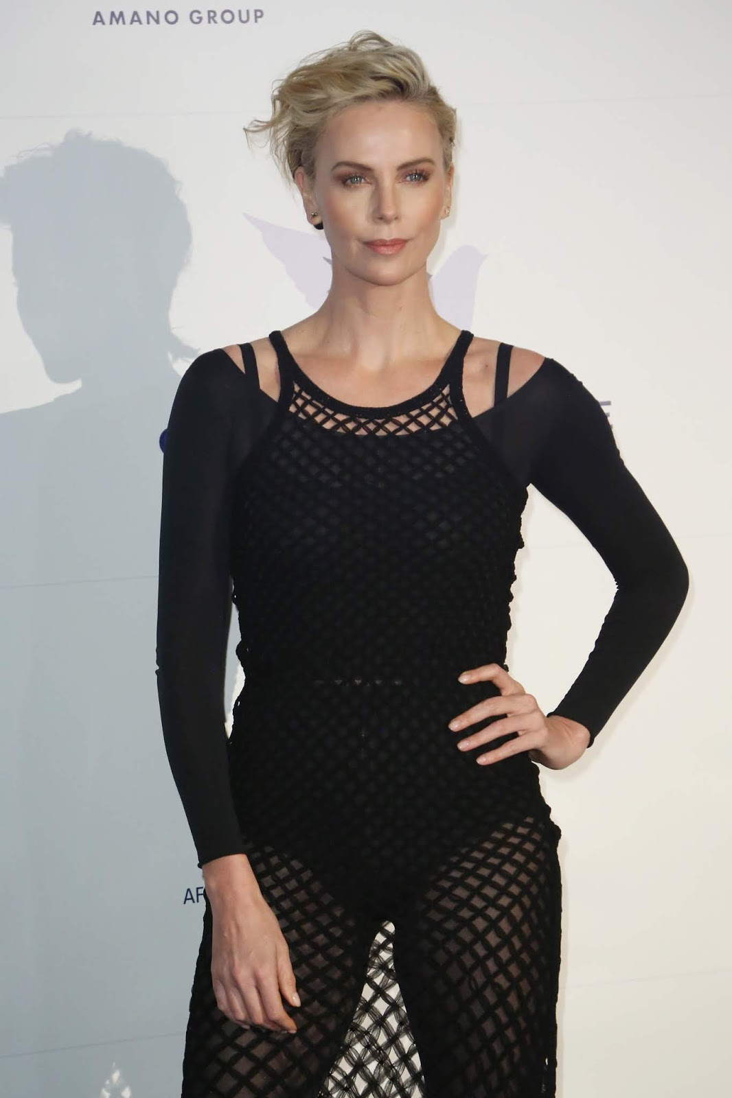 Charlize Theron - Cinema For Peace International Committee & Nominee Dinner in Berlin, Germany February 10, 2019