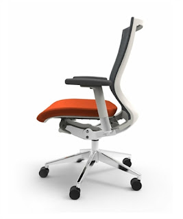 Oroblanco Ergonomic Chair