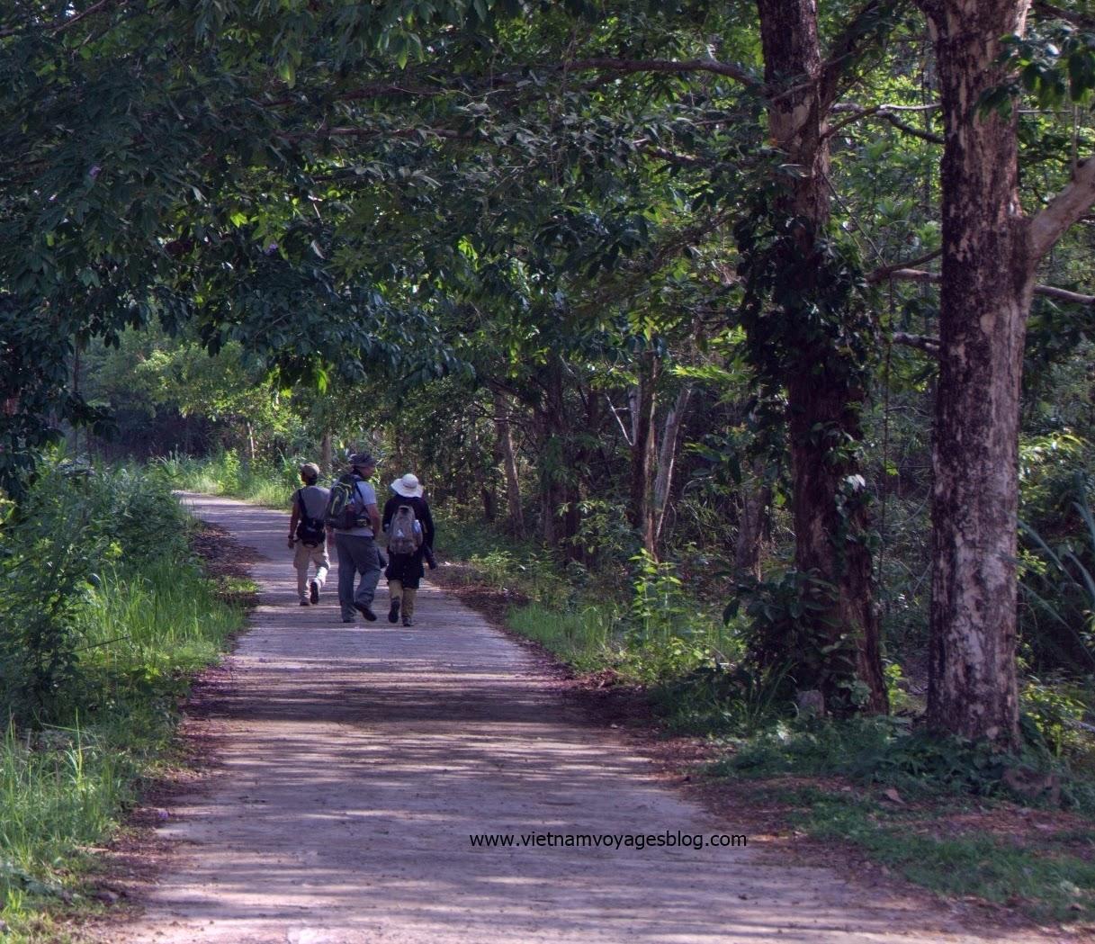 Bắt đầu chuyến tham quan rừng Nam Cát Tiên
