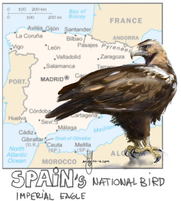 Spain's national bird Painting by Ulf Artmagenta