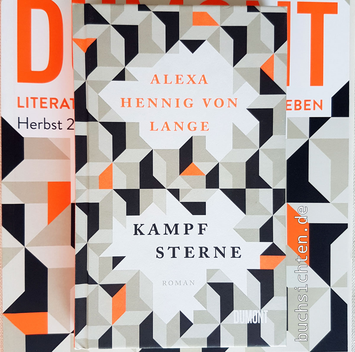 Buchsichten Rezension Ingrid Kampfsterne Von Alexa Hennig