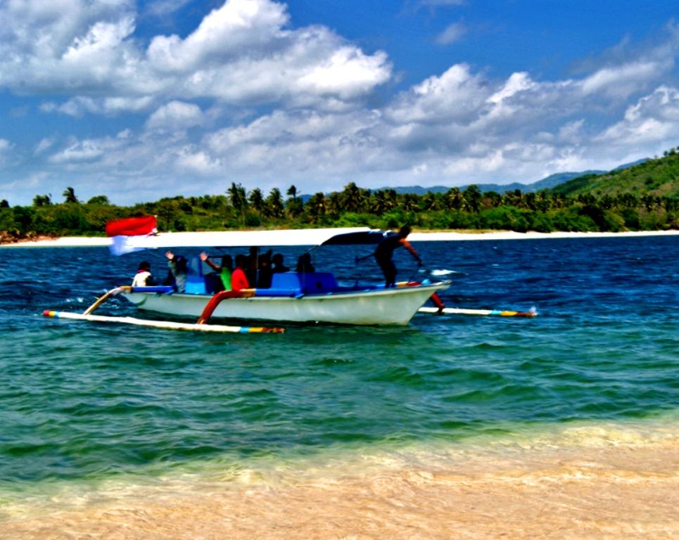 Contoh Ekosistem Pantai Batu Contoh 317