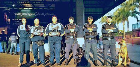 Canil da Guarda de Jundiaí é 3º colocado em Campeonato de Cães de Polícia