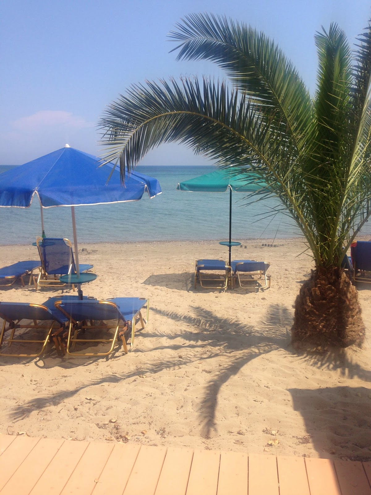 the beach of katelios, kefalonia, greece, with a palm tree and several sun loungers