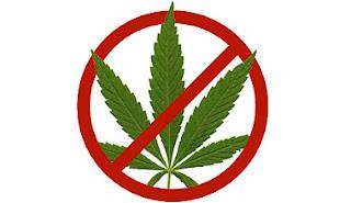 cannabis ist illegal weil es verboten ist