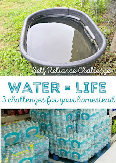 3 water-related challenges to up your self-reliance goals | Oak Hill Homestead
