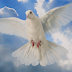 O Espírito Santo e Sua Atuação no Mundo