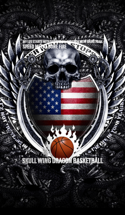 Skull wing dragon basketball