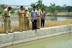 Jadwal Agenda Kosong, Wakil Bupati Pilih Sidak di Balai Benih Ikan