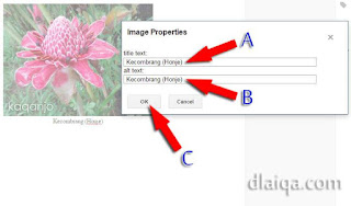 input Image Properties