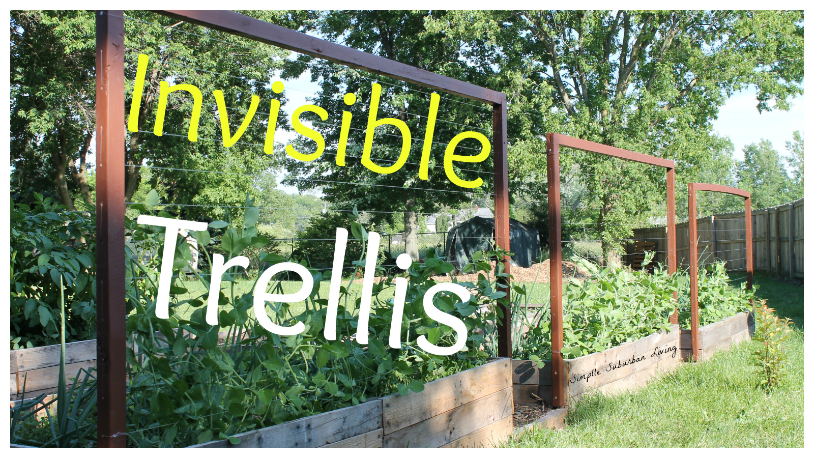 The Invisible Trellis An Inexpensive Raised Bed Trellis