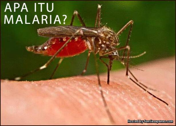Sejarah penyakit malaria