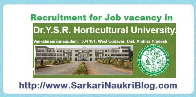 Sarkari Naukri Vacancy Recruitment Dr. YSR HU Andhra Pradesh