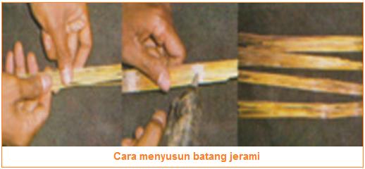 tips cara menyusun batang jerami