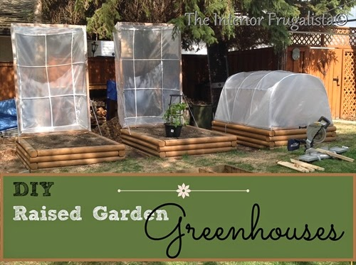 Small Raised Garden Greenhouses {Third Most Viewed Post}