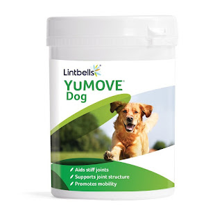 OFFER Lintbells YuMOVE Dog Joint Supplement Stiff/Older Dogs 300 Tablet £33.99 amazon