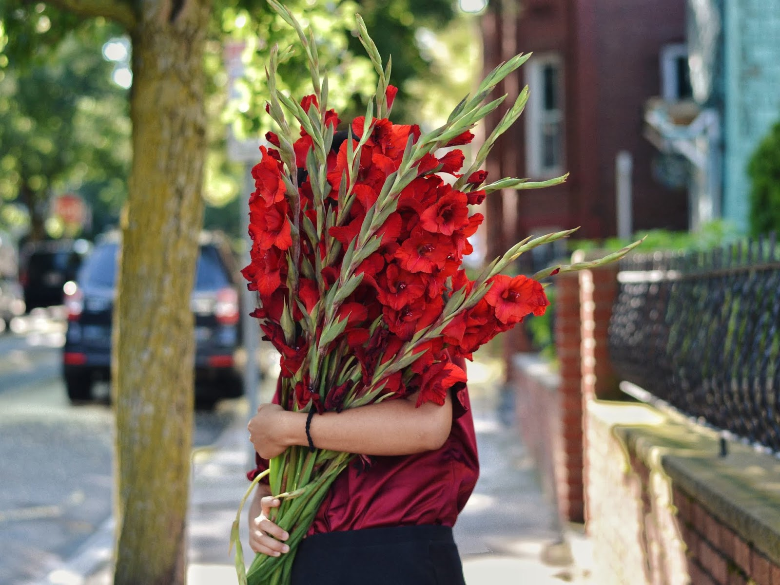 red gladiolus trader joe's