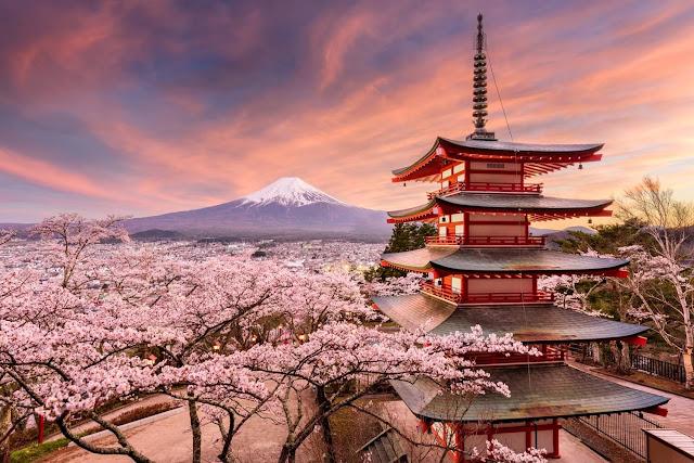 So với nhiều quốc gia khác, du lịch Nhật Bản không những là hành trình trải nghiệm văn hóa mà còn chứng kiến nhiều điều thú vị về cuộc sống và con người của xứ sở Phù tang.