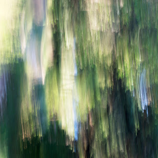 An abstract natural image, featuring lots of blues and greens from the trees and sky