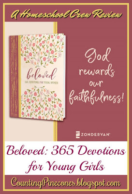 #hsreviews #devotions #DevotionsForYoungWomen #Beloved #books #reading #bookstagram #christianity #faith