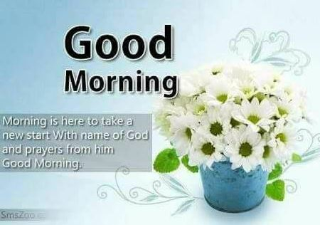 Good Morning Message For Whatsapp Group Whatsapp Status Images