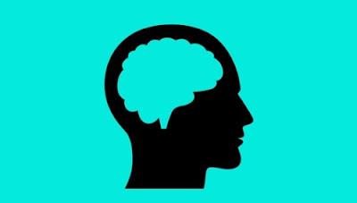 Penyebab Ukuran Otak Manusia Berbeda-Beda