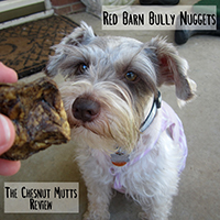 red barn bully nuggets review