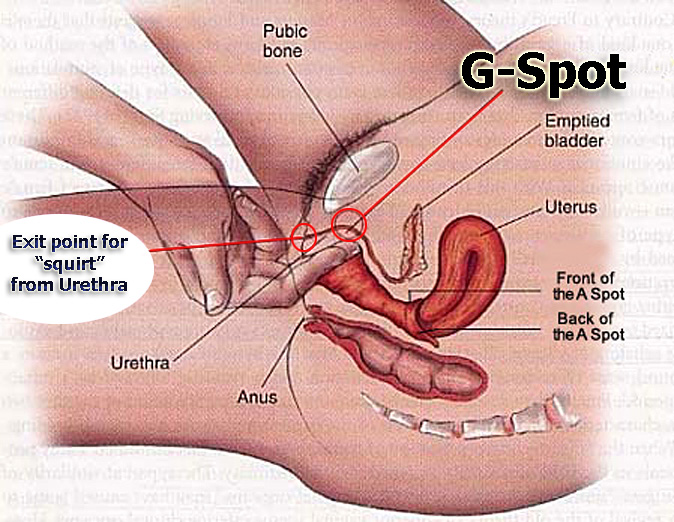 Squirt Gspot 90