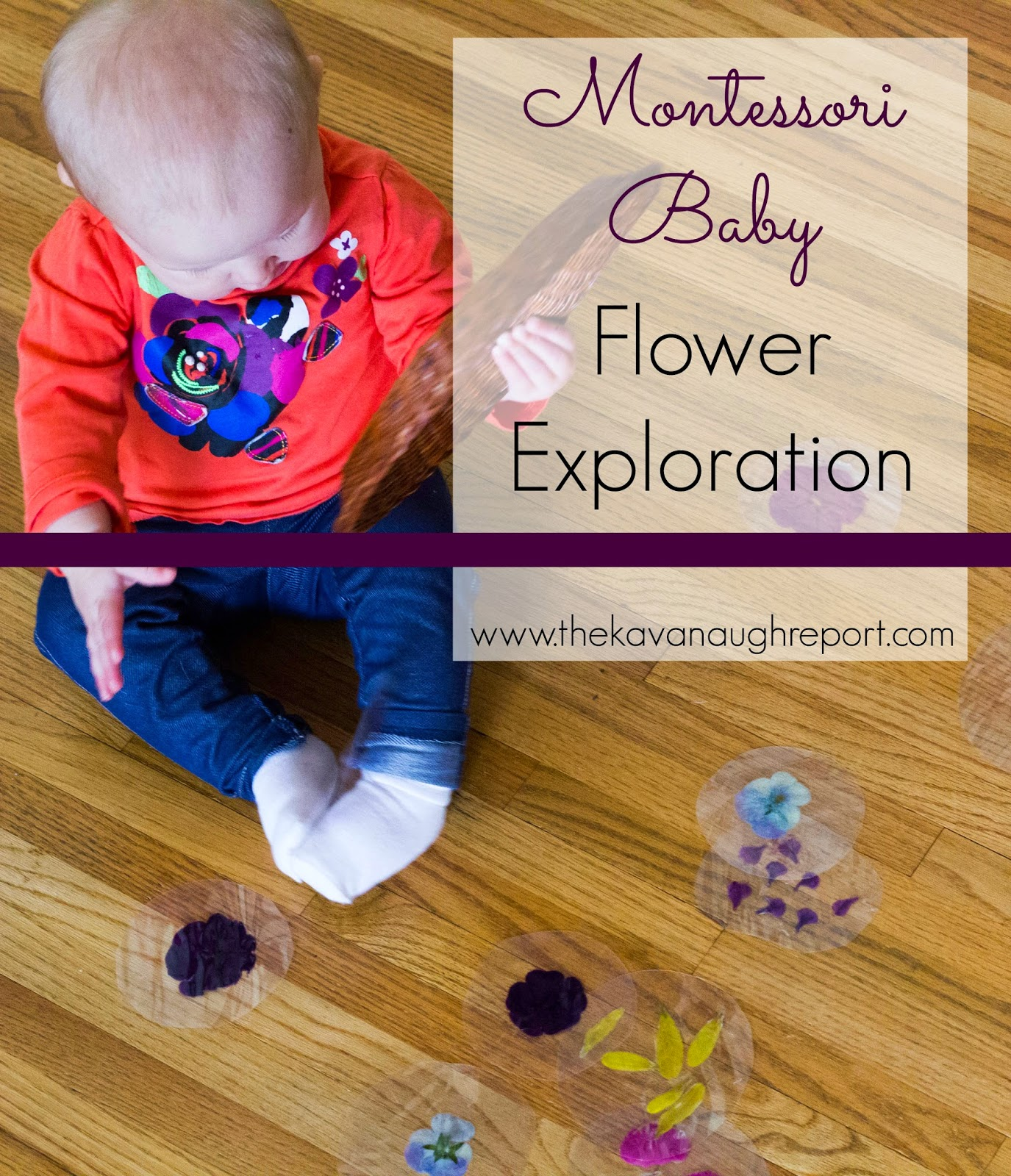Let babies and toddlers explore flowers with this Montessori inspired idea. Laminated flowers are a great way to explore during the spring.