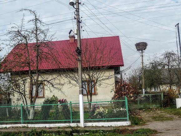 Великие Дедушичи. Улица Гошевская