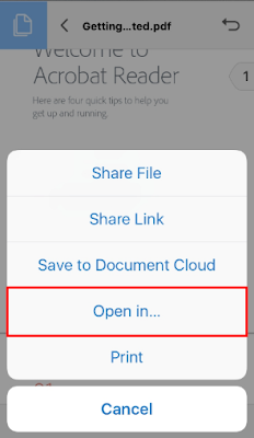 A file Share Options