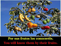 por sus frutos los reconoceran nvi, por sus frutos los reconocere, por sus frutos los reconocerán reflexion