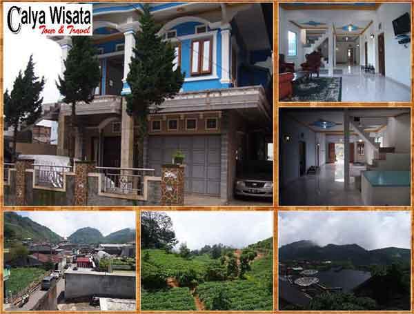 Homestay Pakuwaja Sikunir