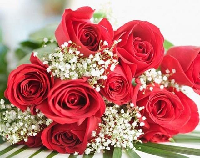 Bó hoa hồng đỏ đẹp nhất thế giới 2