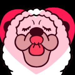 Smiling Alpaca 5
