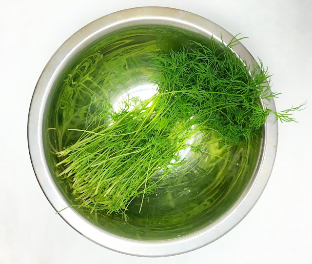 Bowl of Fresh Dill