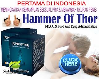 Obat Herbal Menyembuhkan Lemah Syahwat Permanen