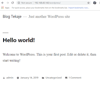 Tampilan halaman web yang sudah dibuat menggunakan wordpress